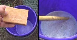 Раствор хозяйственного мыла от тли